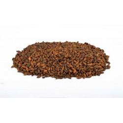 Malte Chocolat | 900 EBC